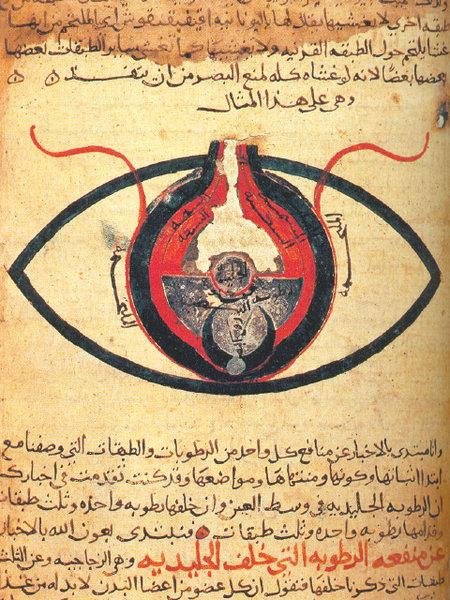 Anatomie de l'œil, écrit par al-Mutadibih en 1200